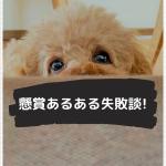 【懸賞あるある失敗談】赤穂の天塩を買ったのに~(;´Д`)