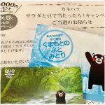 2019.7.5当選☆カネハツ☆クオカード500円分